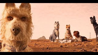 Every Wes Anderson Movie Ranked Worst to Best