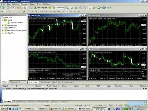 Видео как заработать на форекс альпари умение торговать на рынке форекс