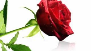 Bonne Fête de  Saint Valentin
