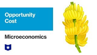 Opportunity Cost | Microeconomics