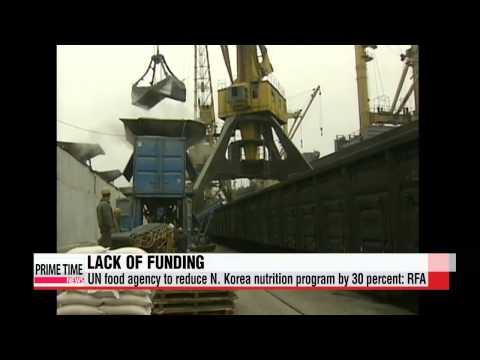 UN food agency to slash nutrition program in N. Korea: RFA