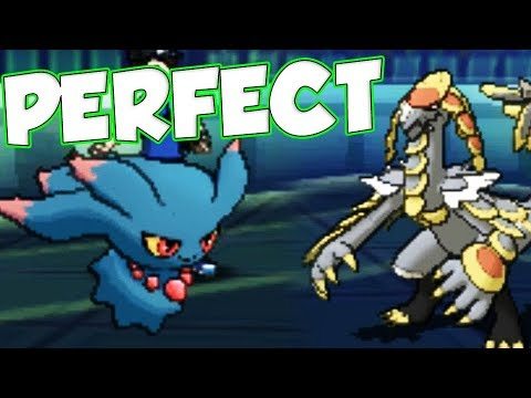 PERFECT Perish Song Pokemon Combo