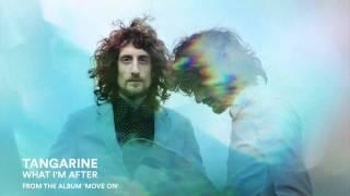 Tangarine - What i