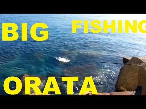 La pesca su acqua fangosa di video
