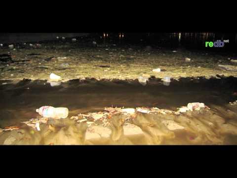 Plastic Pollution at Santa Monica Beach, California