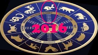 Восточный гороскоп для знака Кролик (Кот) на 2016 год