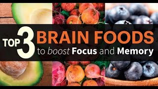 Top 3 Food for Memory | FEED Your BRAIN | Info by Guru Mann