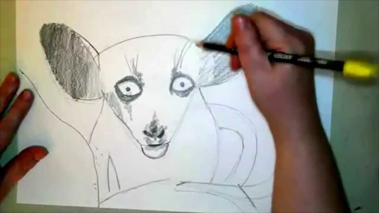 how to draw an aye