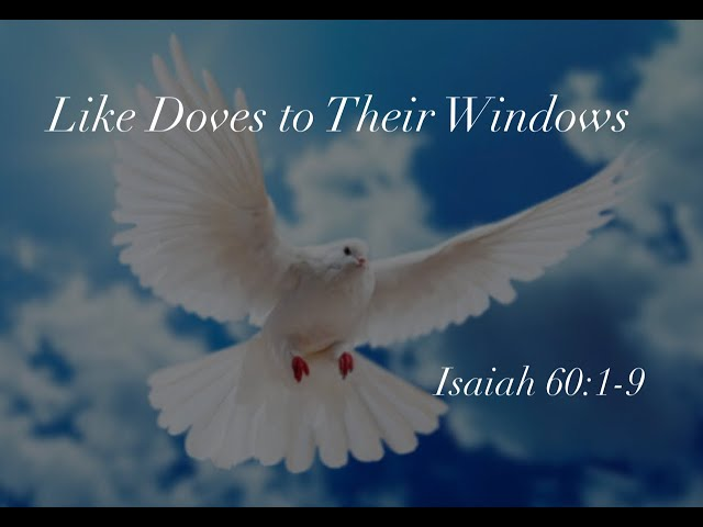 Like Doves to Their Windows Jan 5 2020