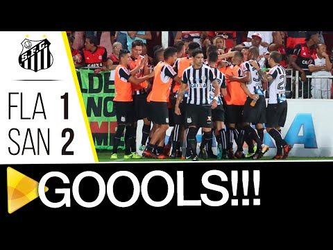 Flamengo 1 x 2 Santos | GOLS | Brasileirão (26/11/17)