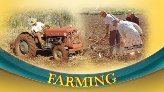 Farming || Field works Farming || vyawasaya works Farming