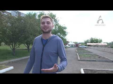 Конопляные газоны в Красноярске
