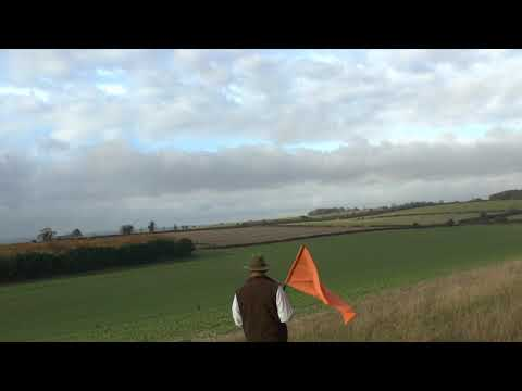 Pheasant and Partridge Shooting on ''The Village Shoot''