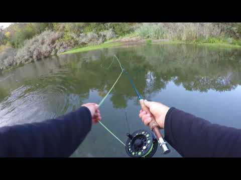 Fishing On The Russian River
