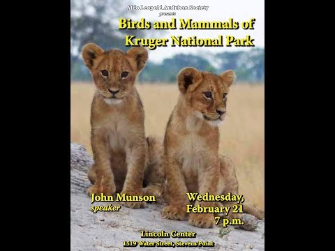 Birds and Mammals of Kruger National Park, South Africa
