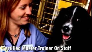 Hickory Plaza Veterinary Clinic Llc