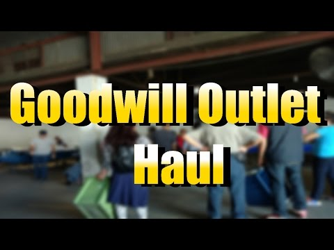 Bin Pickers- Haul Video- Items from The Goodwill Outlet in L