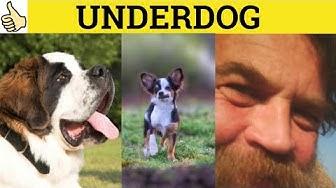 🔵 Underdog  - Underdog Meaning - Underdog Examples - Underdog in a Sentence