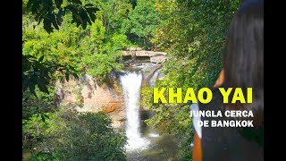 El Parque Nacional de Khao Yai: Selva tailandesa cerca de Bangkok