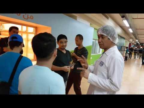 Almarai Dairy Factory Tour 2016