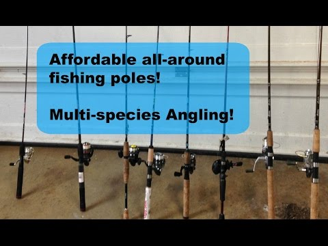 Affordable Multi-Species Rod Reel Arsenal (2016)