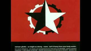 Nitzer ebb-Warsaw ghetto (dub mix)