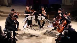 Tchaikovsky Souvenir de Florence, Op.70, III.Allegretto molto (clip)