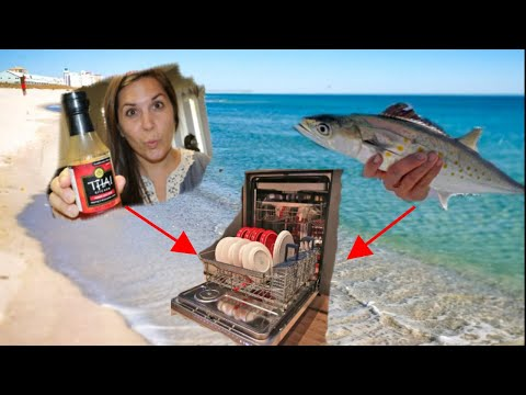 How To COOK FISH In A Dishwasher - Spanish Mackerel With Mango Salsa!
