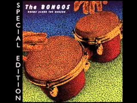 The Bongos with Moby - Bulrushes 2007