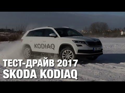 Skoda Kodiaq Тест Драйв и Полный Обзор