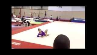 Спортивная гимнастика. Сборник 9 лет. Ауди Нелли
