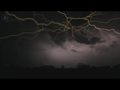 🎧 Thunderstorm Sound & Rain On Leaves Ambience, Raining And Thunder Sounds For Relaxation And Sleep
