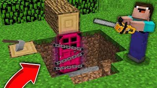 Minecraft NOOB vs PRO: WHO LEFT THIS MAGIC DOOR WITH CHAINS UNDER NOOB TREE? 100% trolling