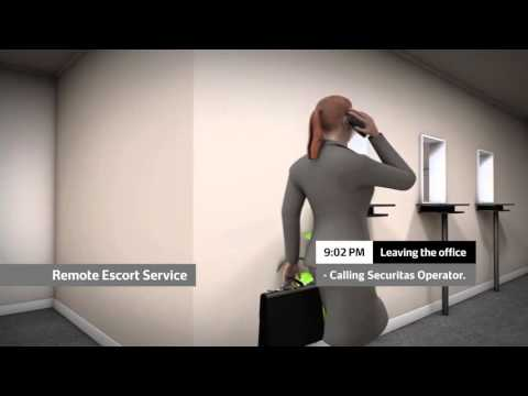 RVS Remote Services