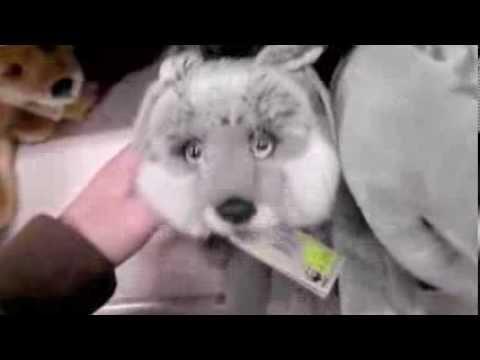 Silver Fox Stuffed Animal, Wwf Silver Foxes Plush Youtube