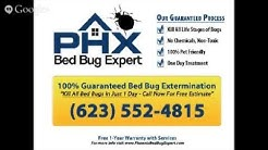 Bed Bug Exterminator in Phoenix, AZ - (623) 552-4815