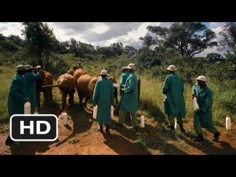 Born to Be Wild #3 Movie CLIP - Elephant Sunscreen (2011) HD