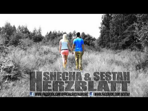 SheCha & Sestah  HERZBLATT