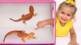 Что в коробке Челлендж - Песня для детей | Детские песни от Майи и Маши