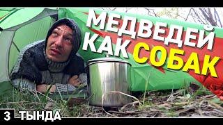 3. Автостоп в Магадан / Медведи достают местных жителей / Холодная ночь в палатке / Тында / Якутия