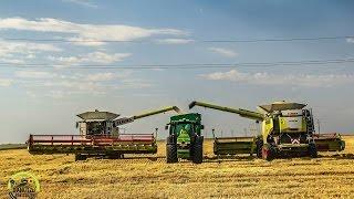 Harvest 2015 . Zniwa 2015 . Recoltat 2015 .