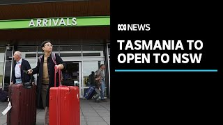 Tasmania to open to travellers from NSW from November 6 | ABC News