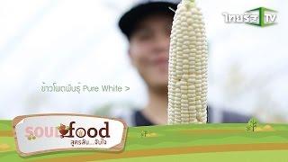 "Soul Food…สูตรลับ จับใจ | Pure White - Picnic ""ราชาแห่งข้าวโพด"" | 06-09-58 | 1/3"