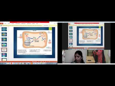 Live classroom clinical data management training