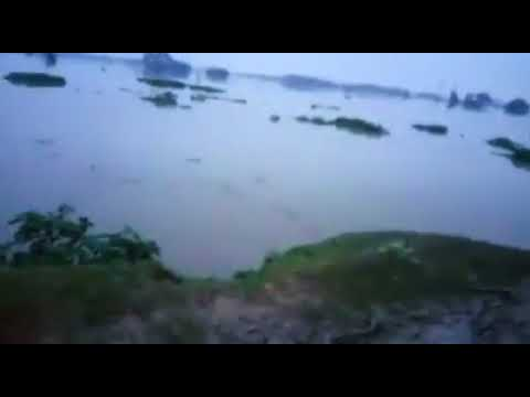 Gorakhpur Final Report: Flood situation worsens in Maharajganj
