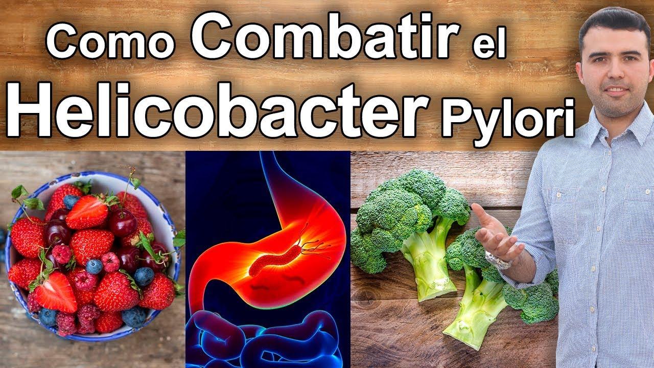 Como se combate la bacteria helicobacter pylori