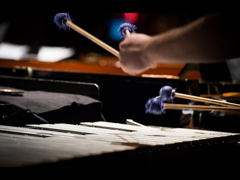 Ensemble Paramirabo And Thin Edge New Music Collective Perform Steve Reich's 'Double Sextet'