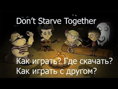 Don't Starve Together: Как установить и играть с другом?