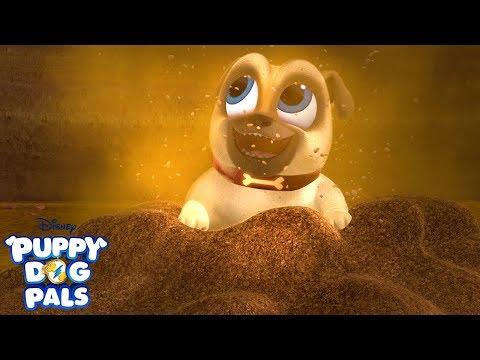Dig | Music Video | Puppy Dog Pals | Disney Junior