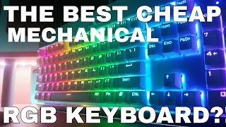 The best cheap mechanical RGB keyboard EVER?!